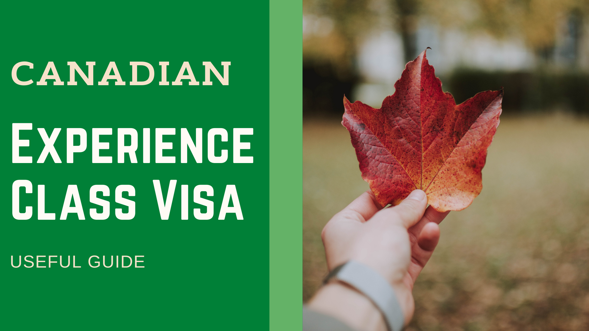 Lay hands on the Canadian Experience Class Visa